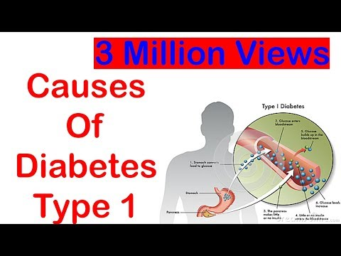 What Causes Diabetes Type 1 (Must Watch For Diabetes Sufferers)