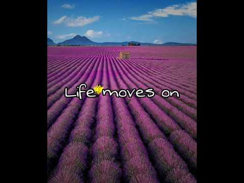 Finneas-Life moves on (Audio Video)