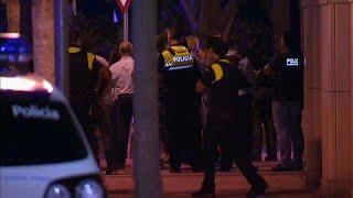 В ходе операции в Камбрильсе убиты по меньшей мере четыре человека, причастных к теракту в…