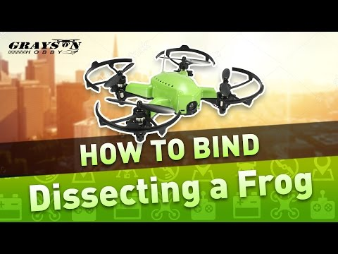 Eachine Q90 Frog | How to Bind FlySky Radio | Best Brushed Micro Quad for FPV