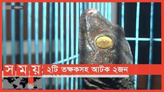 পাচার করা হচ্ছিলো বিলুপ্ত প্রজাতির তক্ষক! | Chattogram News Update | Somoy TV