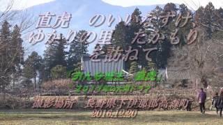 2016.01.30 新春ミステリーツアー どこえ行くやら? 多賀大社。滋賀県犬...