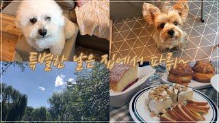 [ 털보주부 ]  쪼꼬&송이네 Vlog  /요리하는 남자, 살림하는 남자/특별한 날에는 집에서 파뤼~…