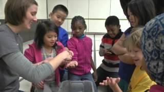 Battle Creek Elementary