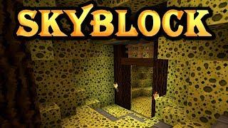 Hypixel SkyBlock [11] We found the Sponge Mines