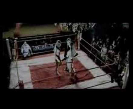 Junior jack stupid disco bikini boxing video