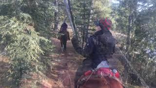 Trail ride in Western Alberta, Canada