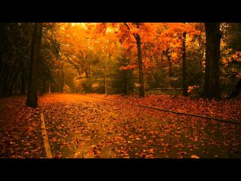 Romantic Piano Music for Making Love - Romantic Peaceful Music
