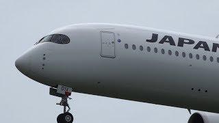Japan Airlines Airbus A350-900 JA01XJ Landing at NRT 16L