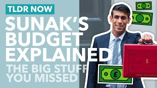 The Budget Explained: 7 Bİg Things You (May Have) Missed - TLDR News