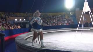 """Северные олени и лайки Ирины Леонтьевой. Программа """"Легенды цирка""""."""