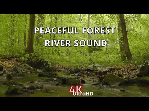 Relaxing Water Sounds for Sleeping, Studying or relaxation - White Noise Stream for Deep Focus