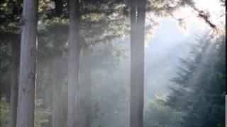 ラヴェル作曲 ピアノ三重奏曲 第4楽章.