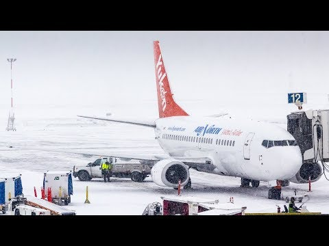 TRIP REPORT | Yukon's Airline! Air North Boeing 737-500 Edmonton to Calgary