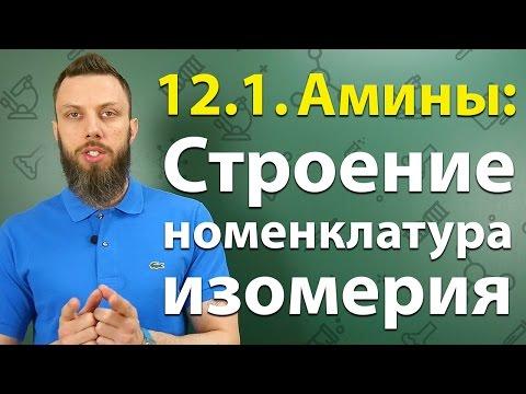 12.1. Амины: Строение, номенклатура, изомерия. ЕГЭ по химии