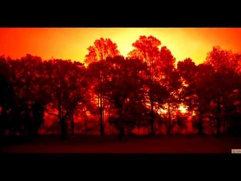 Toby Lightman - Beautiful Day