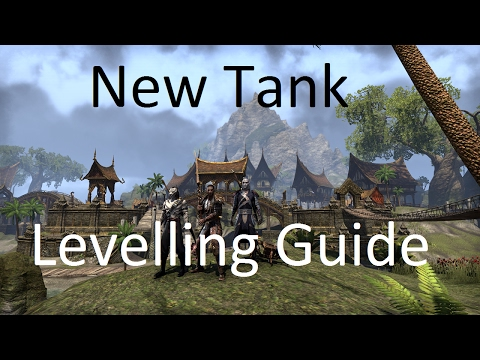 [ESO] Guide For Levelling Your New Tank