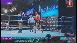 В Минске стартовал чемпионат Европы по муай тай запись прямого включения