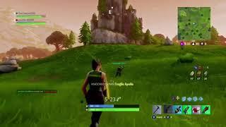Longest kill in fortnite! (Insane clip)