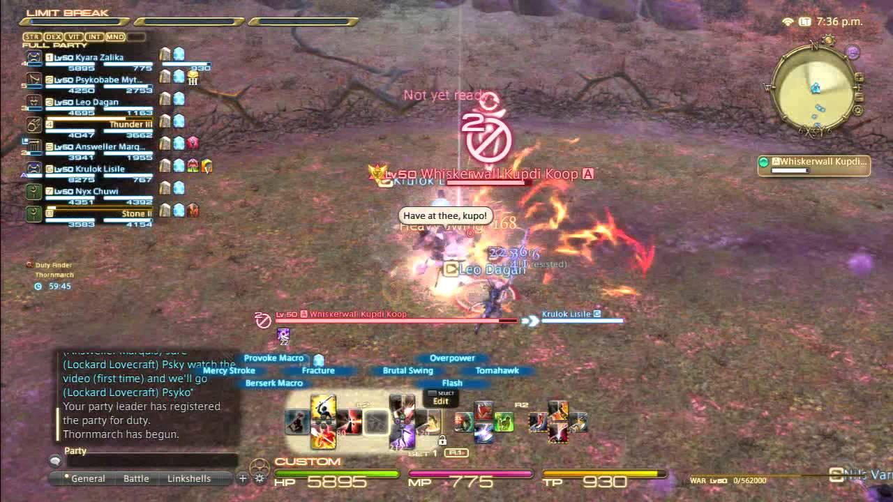 King Moggle Mog Off Tank and Marking POV (Final Fantasy XIV: A Realm Reborn)