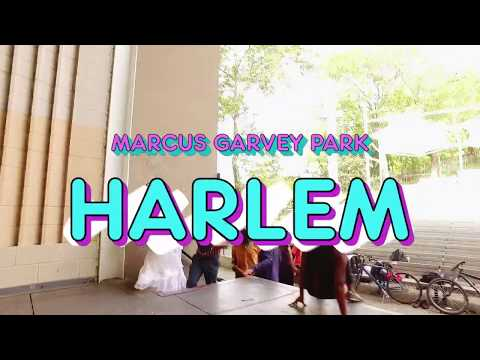 Harlem Arts Festival 2017 Teaser Video