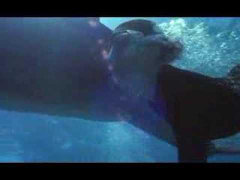 Kathleen Quinlan Dans Zeus Amp Roxanne Freediving Youtube