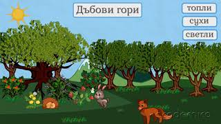 Животът в широколистните гори - Човекът и природата 4 клас | academico