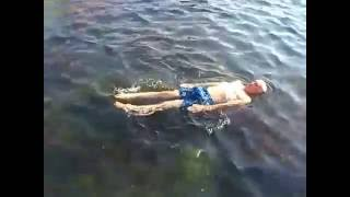 Плавание.  Урок- 46.На  море . Спина .
