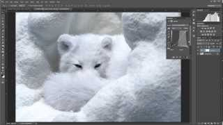 post processing snow photography in lab color space with adobe photogshop