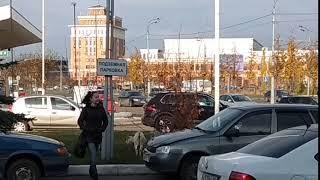 24.10.2018. Козочки в городе.  V D 20181024 114033