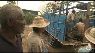 Deadliest Journeys - Panama, business in the jungle