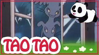 Tao Tao - 48 -  מוזיקאים העיר ברמן