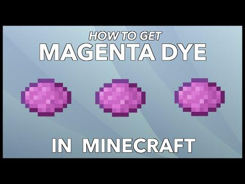 Minecraft Magenta Dye: How To Get Magenta Dye In Minecraft?