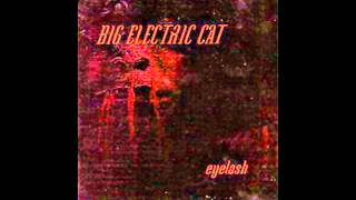 Big Electric Cat - Hallucinations