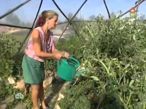 видео: НТВ: дом из самана