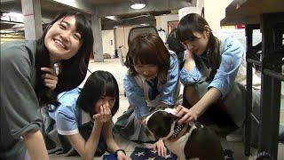 欅坂46 平手ちゃんとワンちゃん パート2 欅坂46 検索動画 25