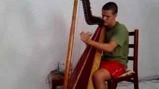 Iron Maiden in the harp - Fear of the Dark