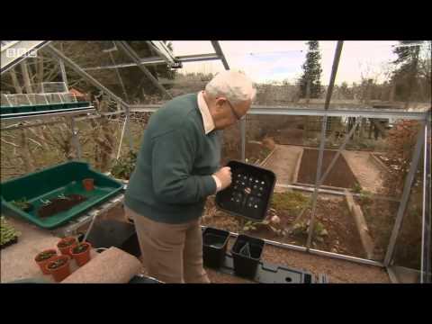 Quadgrow Planter  BBC Beechgrove Garden Fame!