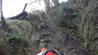 South West Trail Riders - East Cornwall 16th Jan 2016