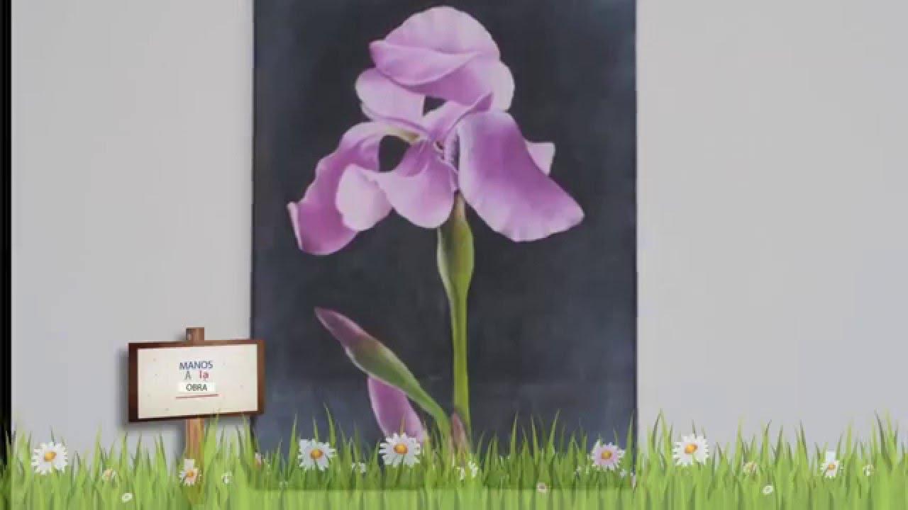 Pintar Al Oleo Como Pintar Lirio Mabel Blanco