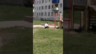 Страну не победить! Выгуливать собак на детской площадке-это для них нормально