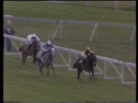 1983 Highland Spring Derby Trial Stakes