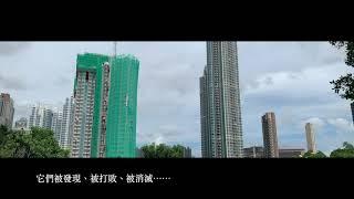 Publication Date: 2019-06-21 | Video Title: 中華基督教青年會中學通識教育科《伙同學計劃》:微故事《香·巷