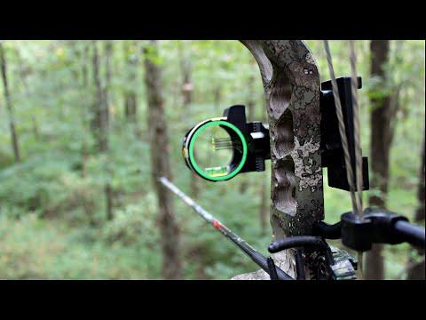 OPENING WEEKEND Whitetail Deer Hunting – Public Land