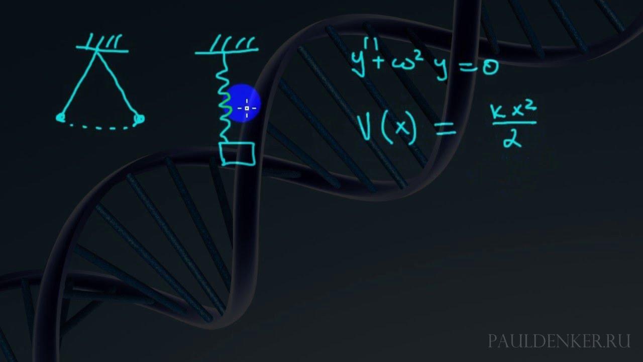 free vorlesungen über differential und integralrechnung zweiter band differentialrechnung