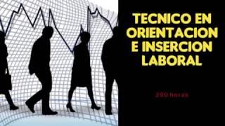 Tecnico en Orientacion Laboral
