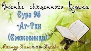 Учебное чтение Корана. 95 Сура «Ат-Тин (Смоковница)»