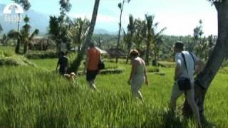 Indonesië Sunda-eilanden Rondreizen | Baobab Reizen