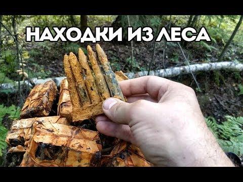 Раскопки ВОВ. Что нельзя брать из леса!