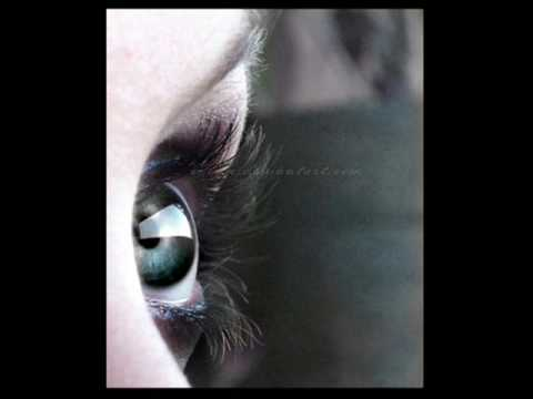 Bonobo ft Bajka - Walk In The Sky (lyrics)